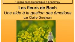 conference-fleurs-de-bach-72-sarthe-octobre-2016